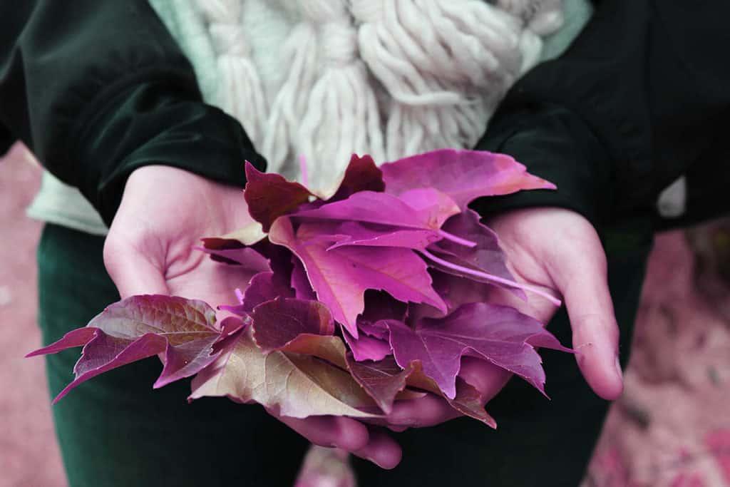 Purple fall makeup