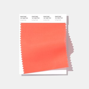 Color Swatch Card - Living Coral