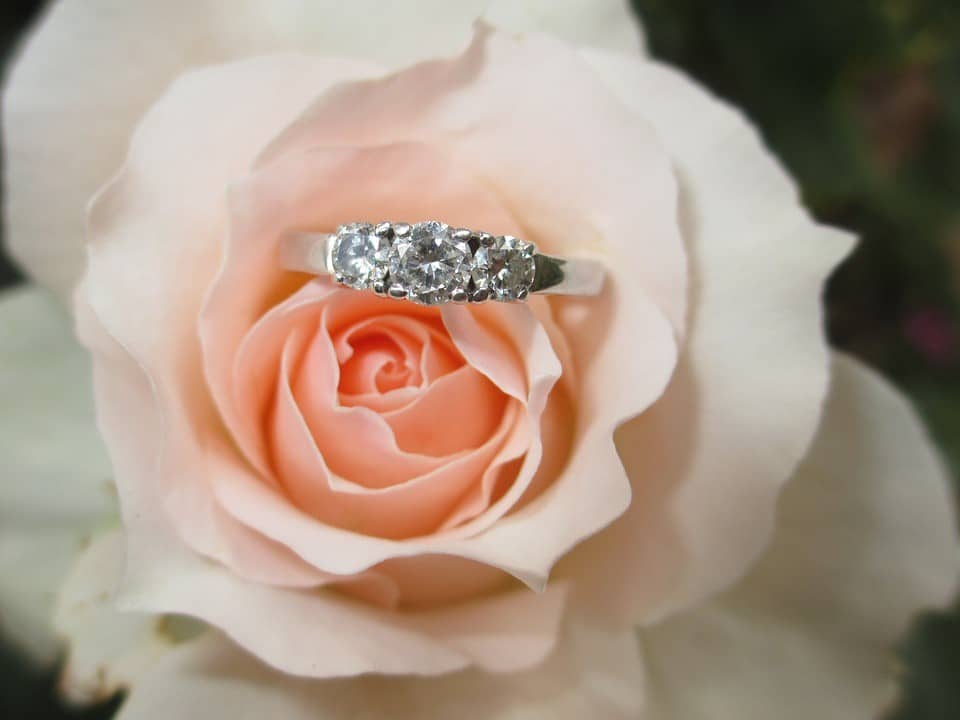 Rose with Engagement Ring