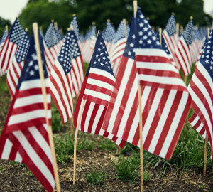 American Flags Feature