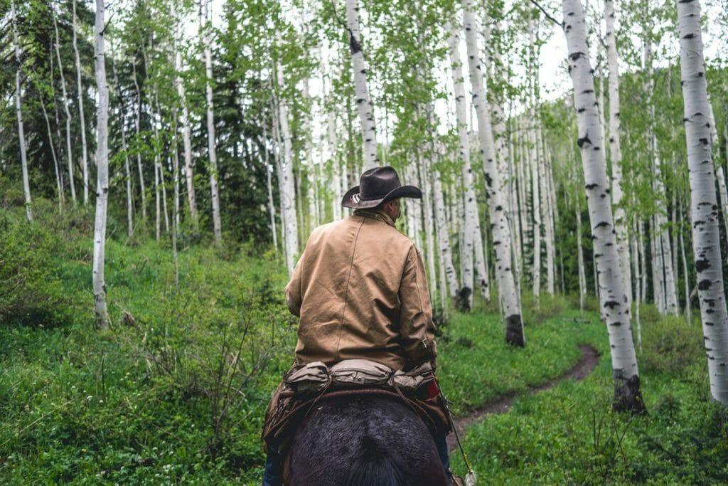Activities - Horseback Riding Trails